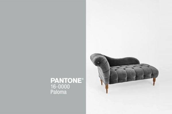 paloma_pantone 1